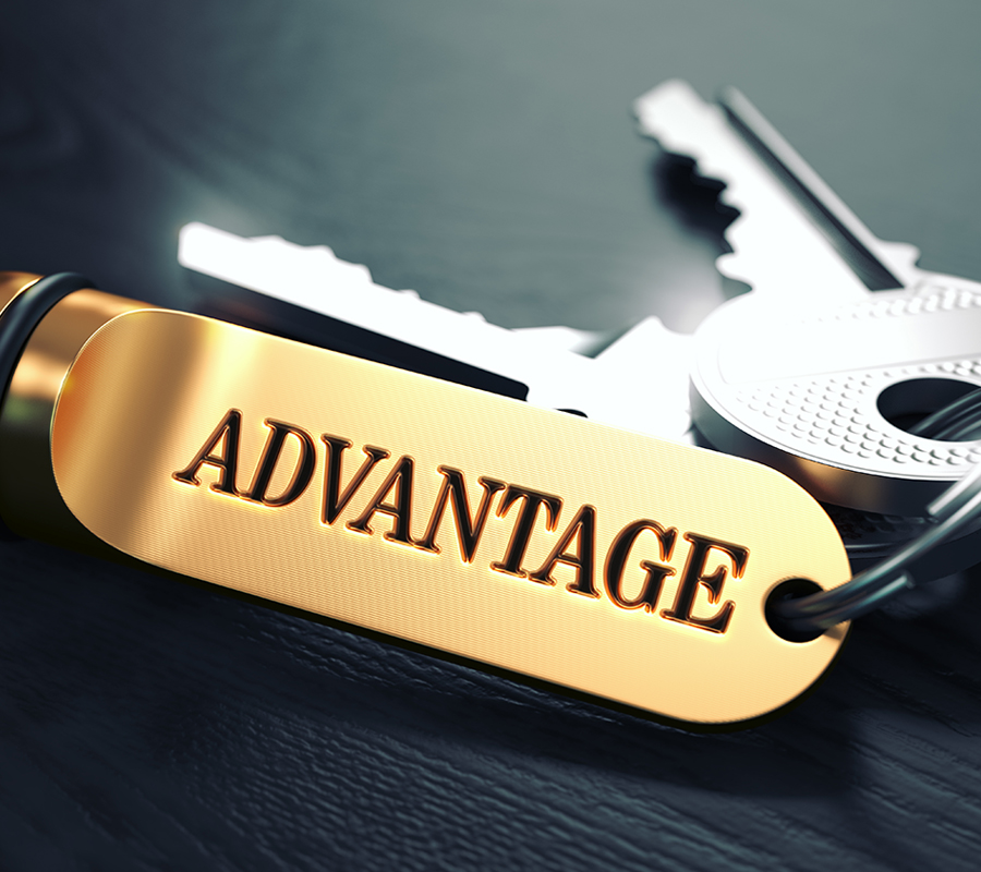 Key Chain with the Word Advantage Printed On It
